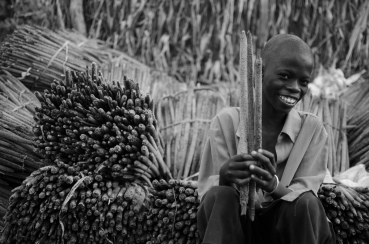 Sering and the millet harvest.